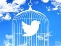 Twitter Logo in birdcage